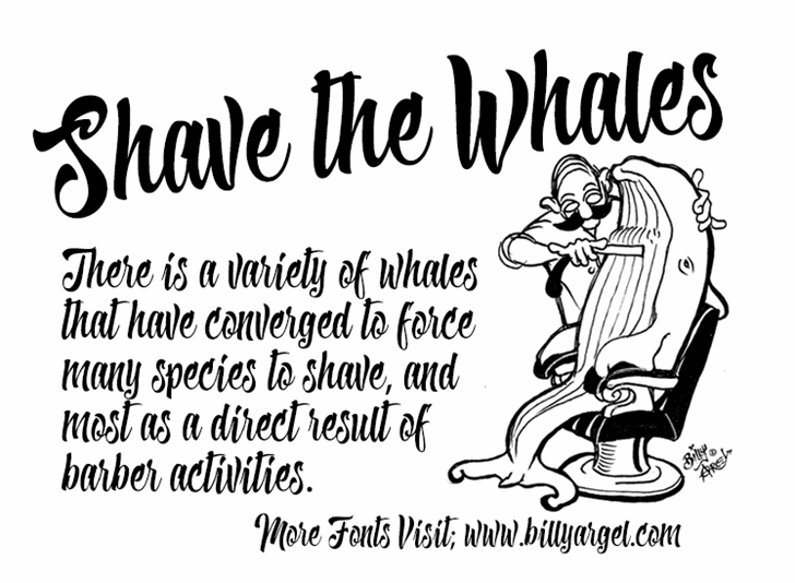 Shave the Whales Personal Use font英文字体|书法|otf/ttf格式